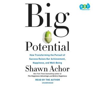 Image result for big potential shawn achor