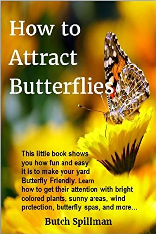 How to Attract Butterflies: It's fun and easy to make your yard Butterfly Friendly. Learn how to get their attention with bright colored plants, sunny ... wind protection, butterfly spas, and more…