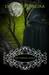 The Vampire Legacy (The Vampire Pirate Saga #4)
