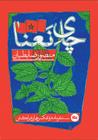 چای نعنا: سفرنامه و عکسهای مراکش