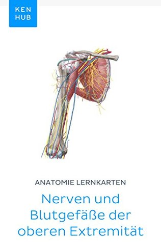 Anatomie Lernkarten: Nerven und Blutgefäße der oberen Extremität: Lerne alle Arterien, Venen und Nerven unterwegs (Kenhub Lernkarten 39)