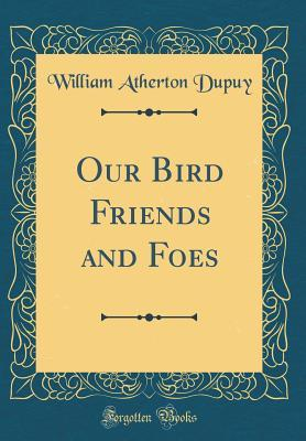 Our Bird Friends and Foes