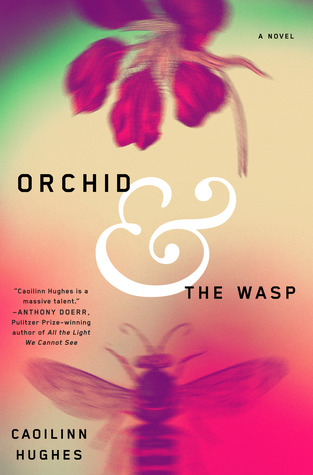Orchid & the Wasp
