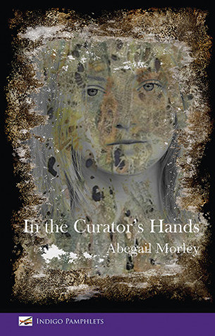 In the Curator's Hands