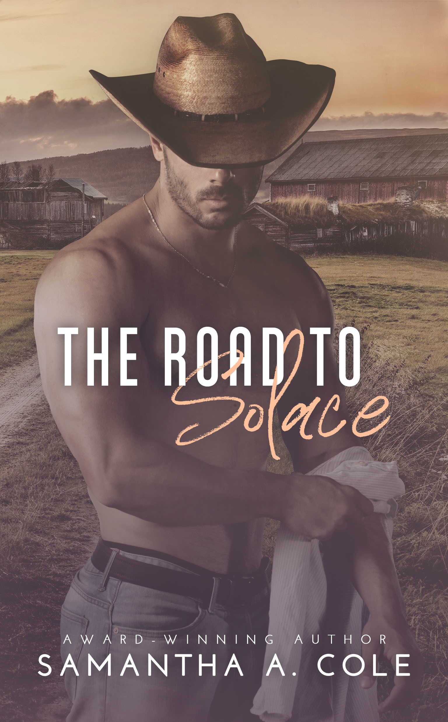 The Road to Solace