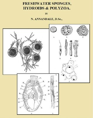 FRESHWATER SPONGES, HYDROIDS & POLYZOA - Fully Illustrated