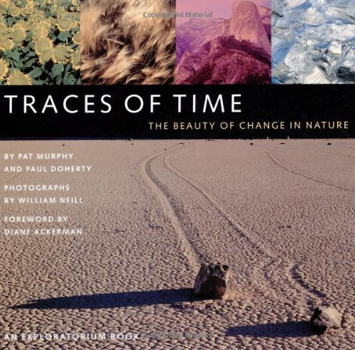 Traces of Time: The Beauty of Change in Nature