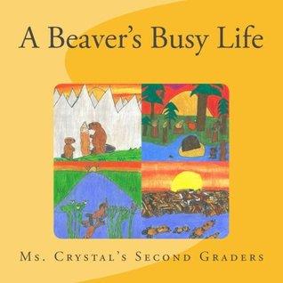 A Beaver's Busy Life