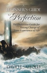 A Beginner's Guide to Perfection by David J. Saffold