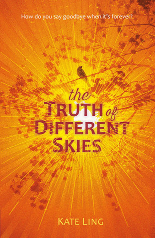 Image result for the truth of different skies