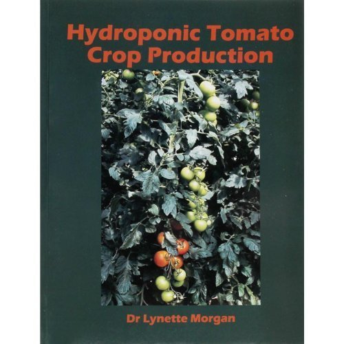 Hydroponic Tomato Crop Production