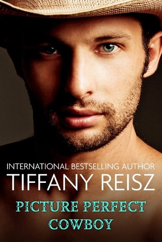 Picture Perfect Cowboy by Tiffany Reisz