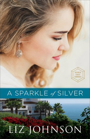 Image result for a sparkle of silver liz johnson