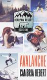 Avalanche (BearPaw Resort,