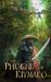 The Phoenix of Kiymako (Book of Never #6)