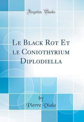 Le Black Rot Et Le Coniothyrium Diplodiella
