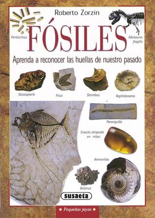 Fósiles. Aprenda a Reconocer las Huellas de Nuestro Pasado par Roberto Zorzin, Belén R. Maribona