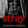 Stray by Natasha Stories