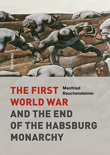 The First World War: and the End of the Habsburg Monarchy, 1914-1918