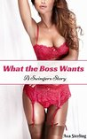 What the Boss Wants by Ava Sterling