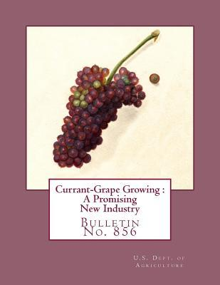 Currant-Grape Growing: A Promising New Industry: Bulletin No. 856