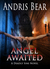 Angel Awaited by Andris Bear
