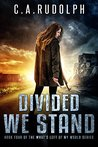 Divided We Stand (What's Left of My World Book 4)