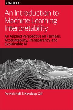 An introduction to machine learning interpretability