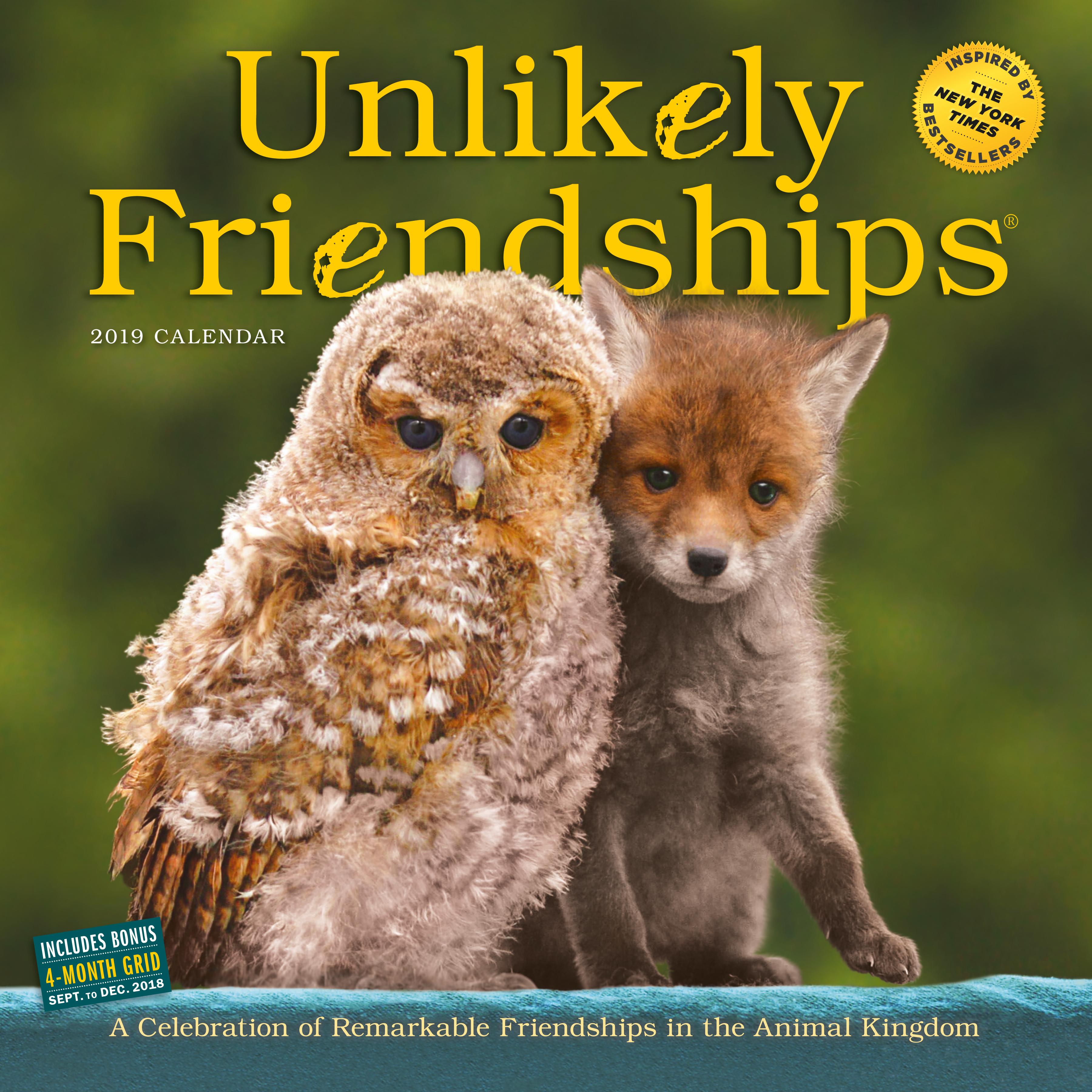 Unlikely Friendships Wall Calendar 2019