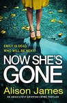 Now She's Gone (Detective Rachel Prince Book 2)