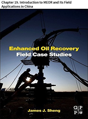 Enhanced Oil Recovery Field Case Studies: Chapter 19. Introduction to MEOR and Its Field Applications in China
