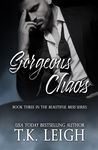 Gorgeous Chaos (Beautiful Mess, #3)