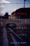 Hidden in a Small Town: A Suspense