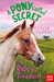 A Ride to Freedom  (A Pony Called Secret, #3)