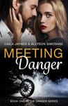Meeting Danger: Romantic Suspense (Book One in the Danger Series)