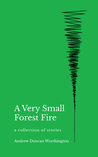 A Very Small Forest Fire