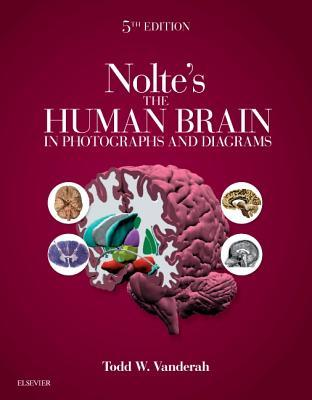 Nolte's the Human Brain in Photographs and Diagrams E-Book