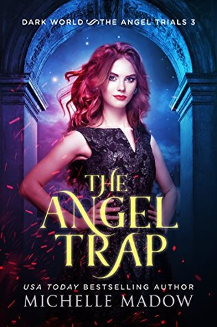 The Angel Trap by Michelle Madow