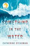 Something in the Water by Catherine Steadman audiobook
