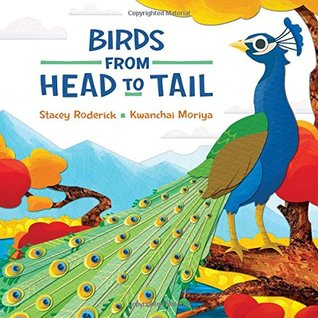 Birds from Head to Tail by Stacey Roderick
