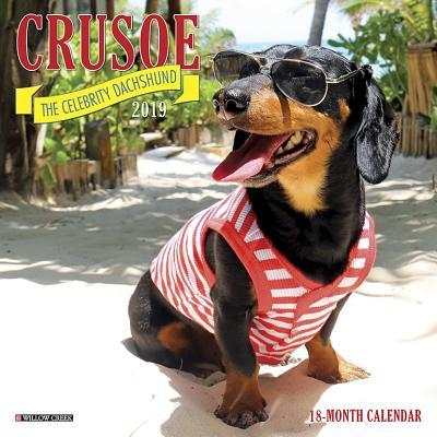 Crusoe the Celebrity Dachshund Mini 2019 Wall Calendar