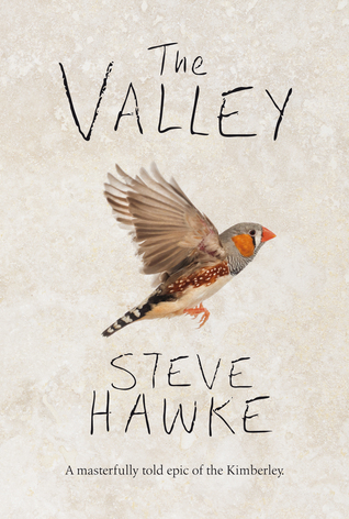 The Valley by Steve Hawke