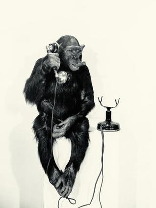 Key insights from Our Inner Ape