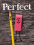 Perfect by Max Amato