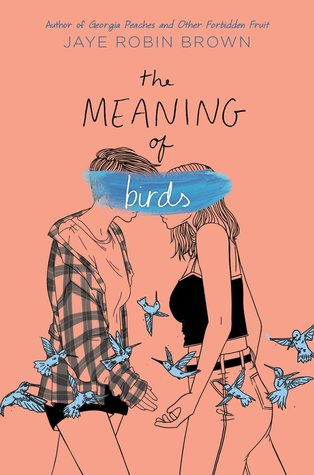 Image result for the meaning of birds jaye robin brown