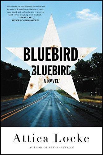 Bluebird, Bluebird (Highway 59 #1)
