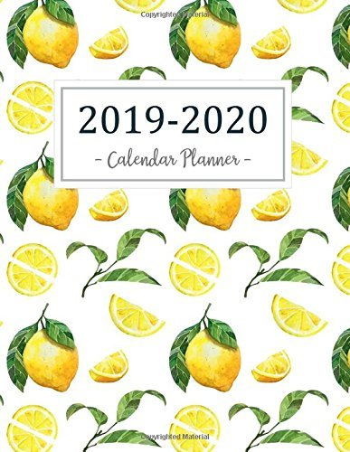 2019-2020 Calendar Planner: 2019 - 2020 Two Year Calendar Planner | Daily Weekly And Monthly For Academic Agenda Schedule Organizer Logbook and ... 2020 Daily Weekly Monthly Planner (Volume 5)