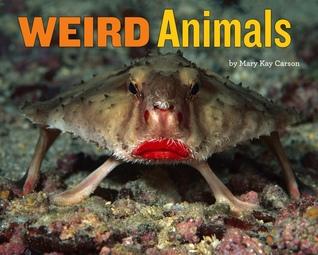 Weird Animals by Mary Kay Carson