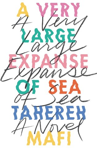 Image result for a very large expanse of sea goodreads