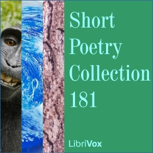 Short Poetry Collection 181